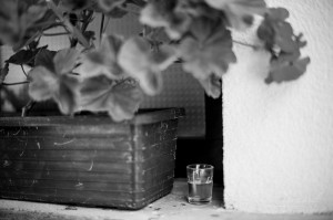 vencurik-foto-svadobne-vychod-144